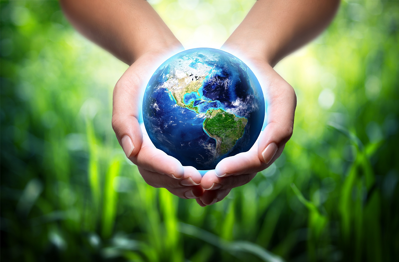 environment protection essay